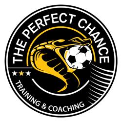 The Perfect Chance JPG 250x250